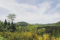 Puy de Vichatel
