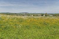 Rochefort-Montagne
