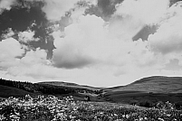 Saint-Alyre-es-Montagne